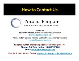 Polaris contact