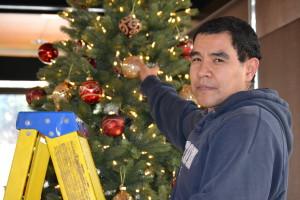 Noe Christmas tree