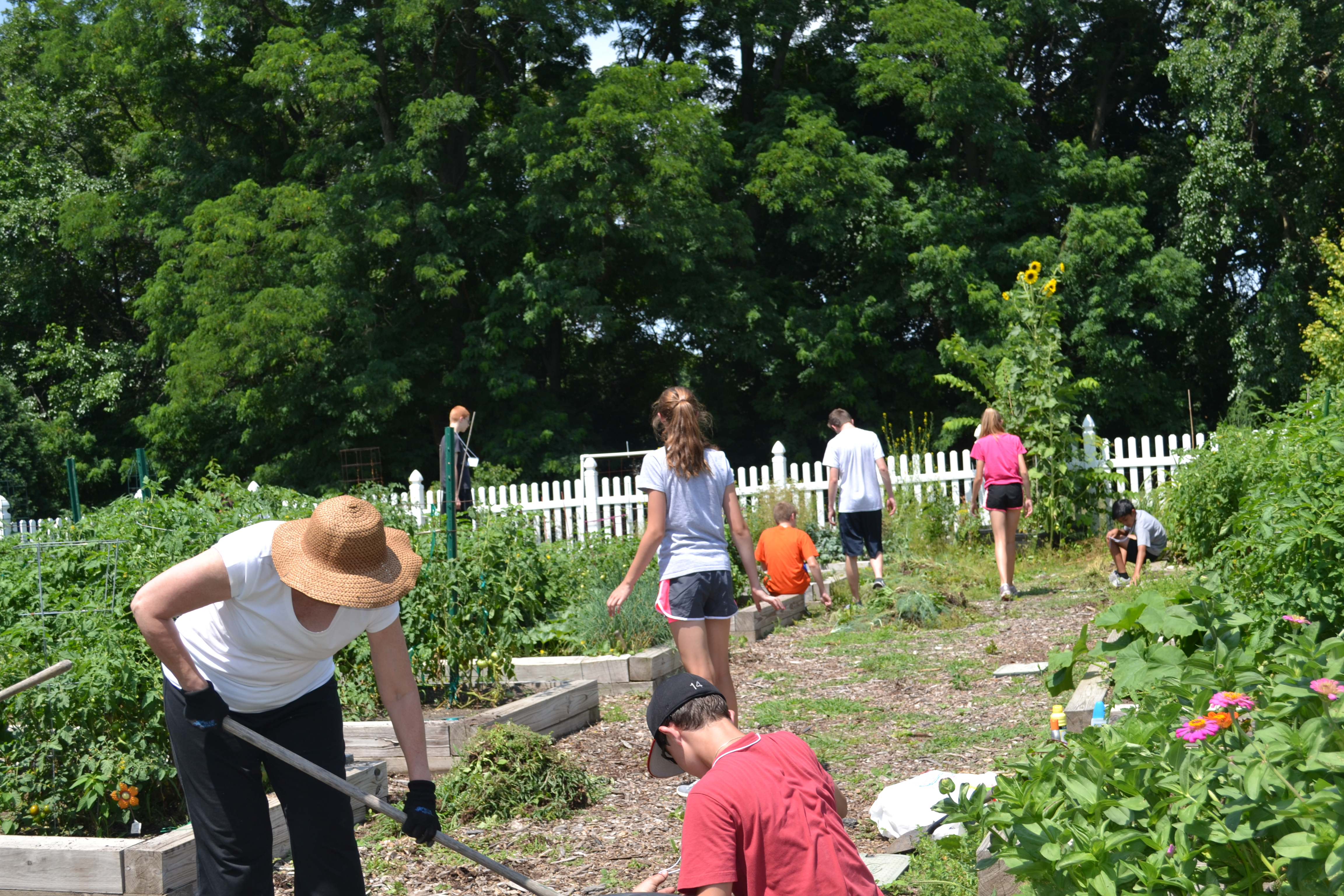Giving Garden Continues to Provide Healthy Vegetables for Families
